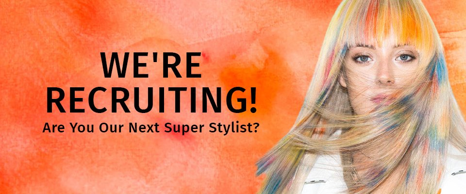 Are You Are Next Super Stylist 5