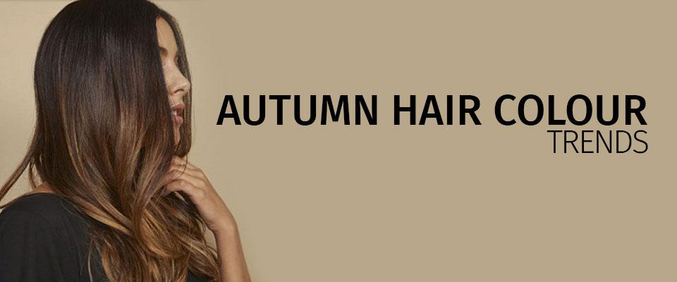 Autumn Hair Colour Trends banner